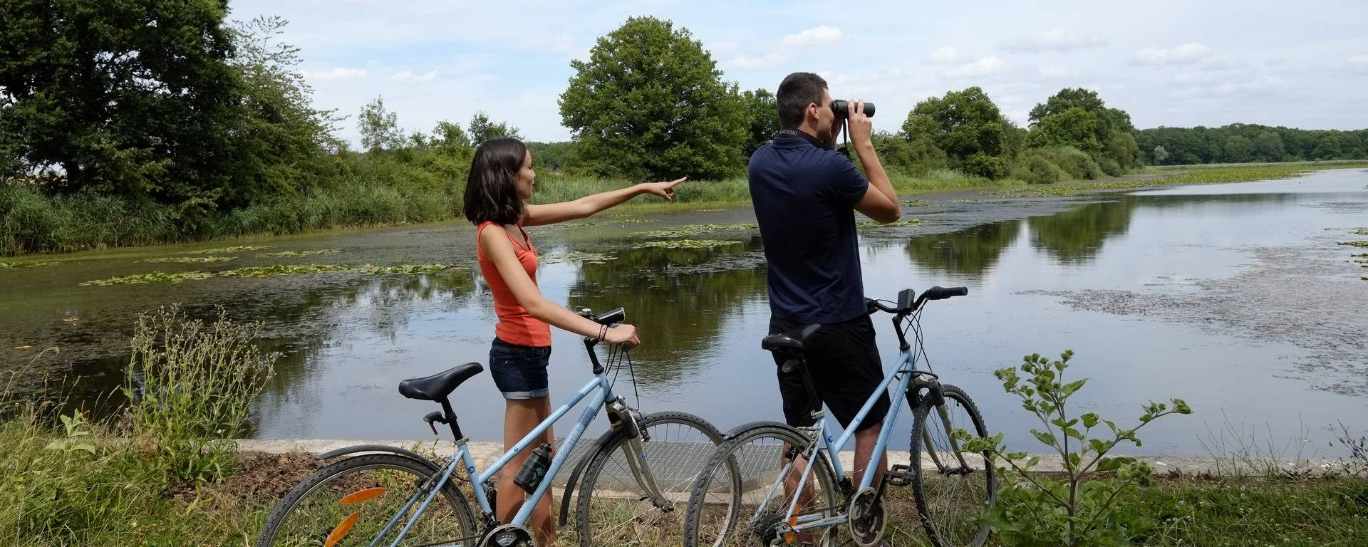 Tour du Lac du Der en vélo - Observer les oiseaux