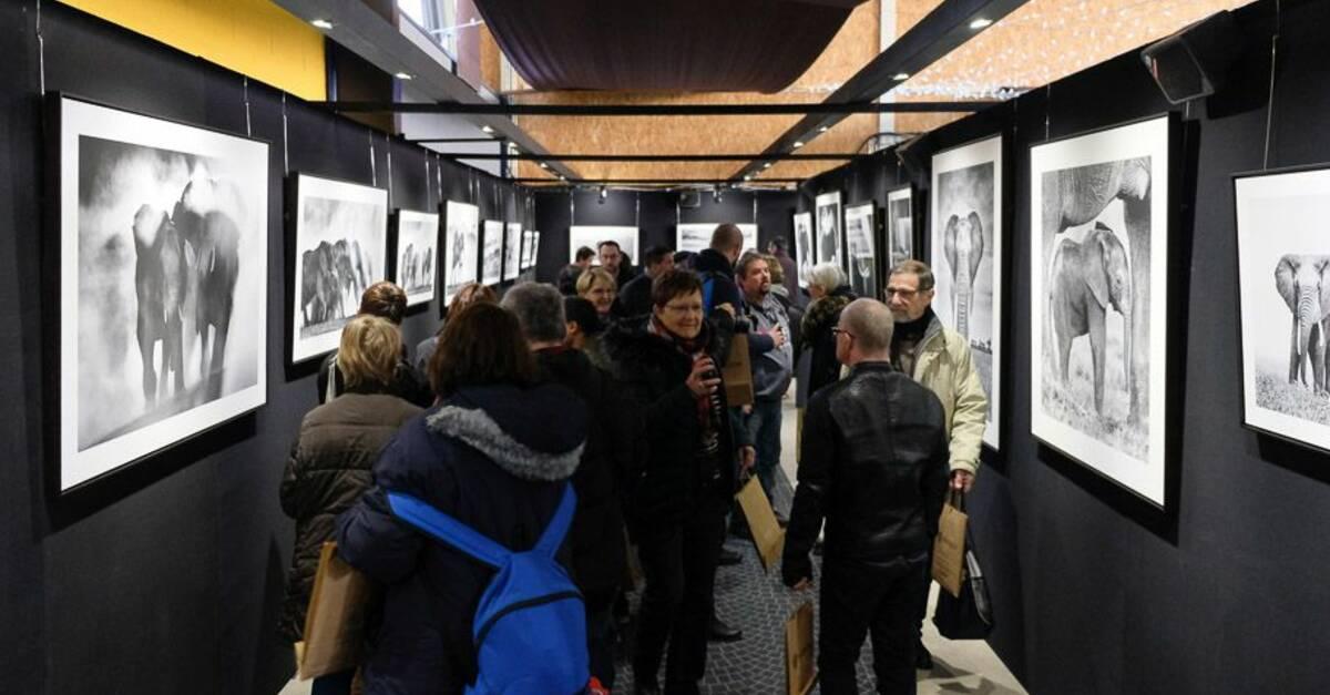 Le festival photo de montier office de tourisme lac du - Office du tourisme champagne ...