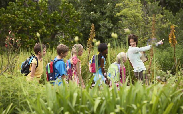 Devis Groupes Enfants