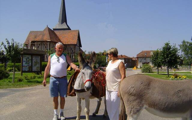 Hikers with donkey