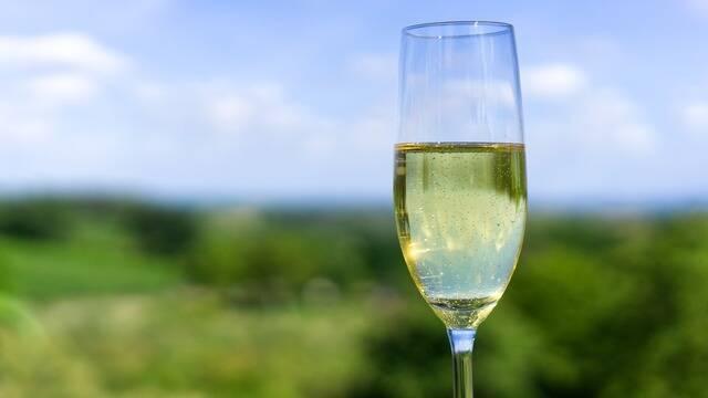 Nos producteurs de Champagne - Deutsch